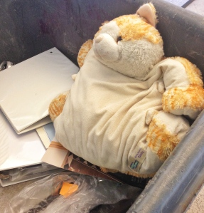 This sad dumpster pillow cat has absolutely nothing to do with this post.